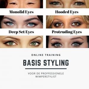styling online training