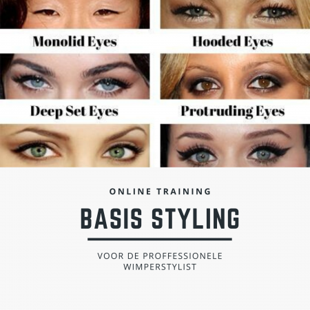 online training styling